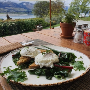 Poached eggs on toast with greens and view of lake